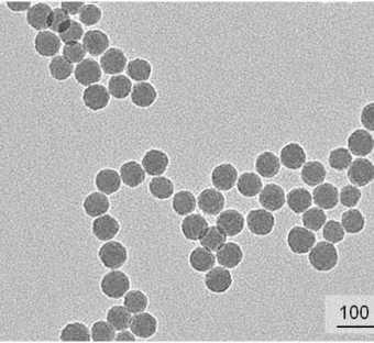 Nanobeads di silice fluorescenti per STED