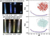 Chirinos-Flores et al., Gelation of amphiphilic janus particles in an apolar medium, Journal of Colloid and Interface Science, 590 (2021) 12-18.